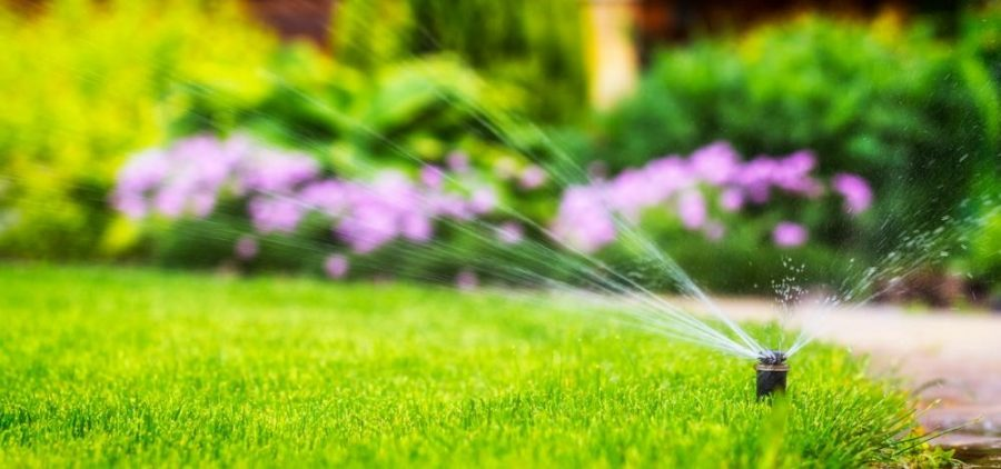 What Are Irrigation Supplies And How Do They Work?