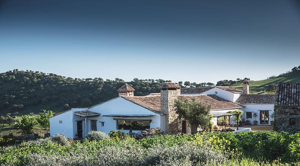 Finca La Donaira, Absolute Peace in Beautiful Andalucia