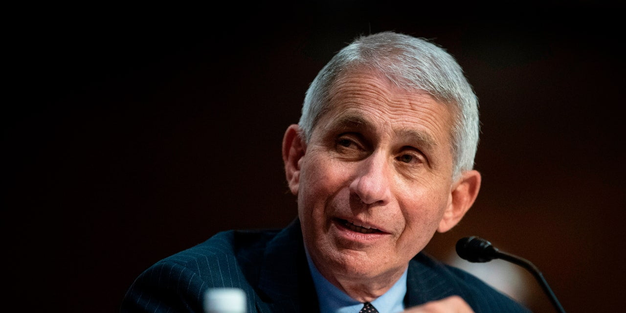 Dr. Fauci Says a COVID-19 Herd Immunity Strategy Is 'Total Nonsense'