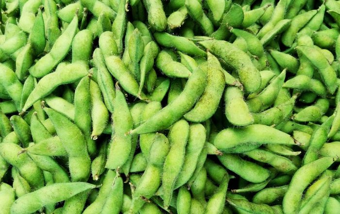 Trader Joe's Edamame Recalled in 4 States for Possible Listeria Contamination